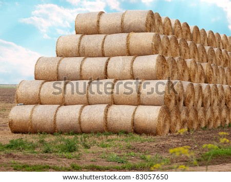 Large pile of bales of hay outdoors in the field #83057650