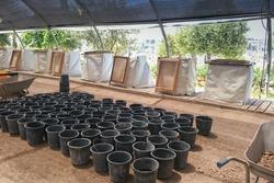 Large pots for planting trees in the Zurim National Park in Jerusalem, Israel