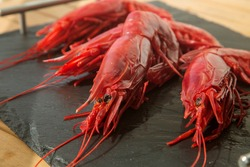 large raw red king prawn on a black background close up