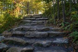 Large rock path through the woods at the Kinzua Bridge State Park in Pennsylvania.