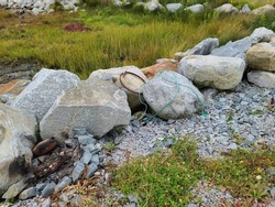 Large rocks with a rusty ring and ropes tossed on them. Sea grass is growing behind the large, jagged edged boulders.