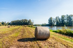 Large roll of harvested hay in the foreground. The hay roll is wrapped with air-permeable mesh. The grassland is bordered by a lake, bushes and trees. It is a sunny day at the end of the Dutch summer.