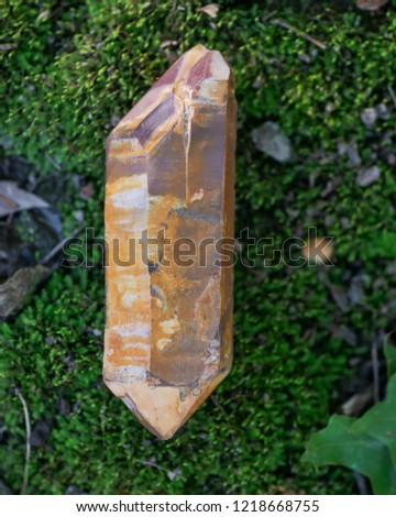 Large saturated double terminated lithium quartz point from Brazil on green moss in the forest preserve. #1218668755