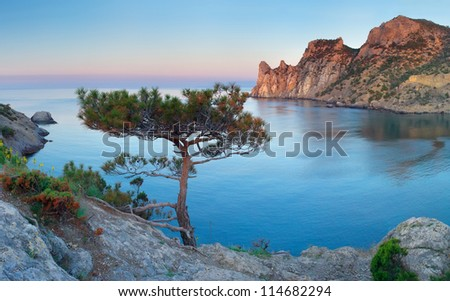 Large sea bay during sunset. Natural composition