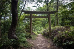 Large shinto gate over forest trail in mountains