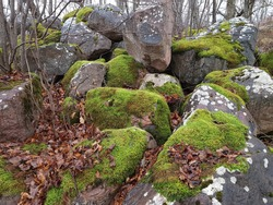 Large stone boulders covered with green moss on a cloudy rainy autumn day