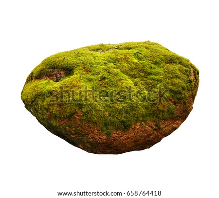Large stone covered with green moss isolated on white background oval forms