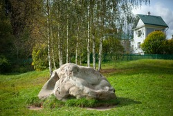 Large stone on the lawn. The boulder lies on the green grass in the yard. Landscaping of a natural slope. A beautiful stone. Cobblestone on the estate.