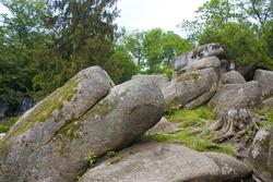 Large stones in National dendrological park