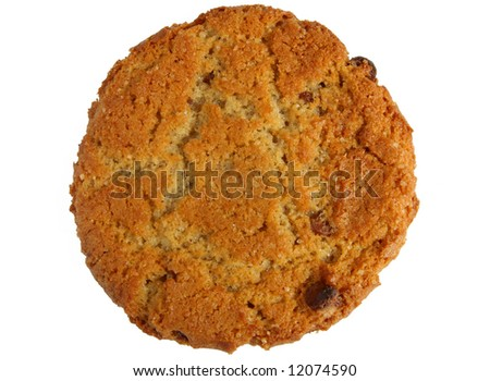 Large tasty homemade ginger biscuit cookie isolated over white.