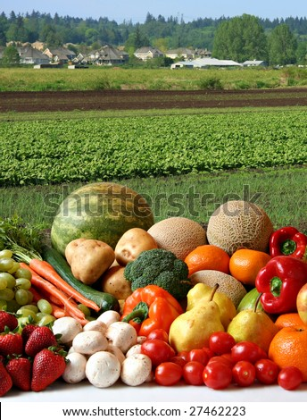 Large variety of fresh fruit and vegetables, water droplets visible at 100% in front of the farmer's field.