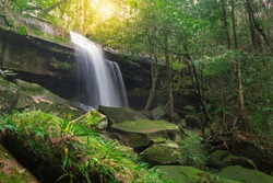 Large waterfall  The rapids flow down the steep cliffs to the bottom boredom.  Diffusing stream  The nature of the rainy season, moss ferns growing along the green stone.  The abundant rain forest