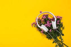 Large white headphones and lush chrysanthemum flower on yellow background with space for text. A gentle and romantic melody. Hello Spring. Flower shop. Musical accessories store. Summertime lifestyle.