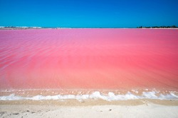 Las Coloradas is a community, Yucatán, Mexico. Huge salt evaporation ponds for sea salt extraction lie on this stretch of land, some of them showing peculiar due to micro organisms, like the pink lago