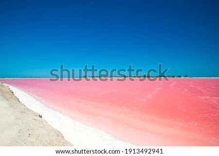 Las Coloradas is a community, Yucatán, Mexico. Huge salt evaporation ponds for sea salt extraction lie on this stretch of land, some of them showing peculiar due to micro organisms, like the pink lago Foto stock ©