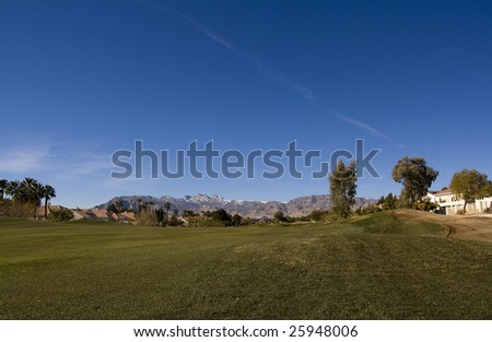Las Vegas Desert Golf Course Rough