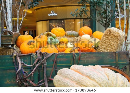 LAS VEGAS, NEVADA, USA - OCTOBER 21, 2013 : Autumn theme in a greenhouse at Bellagio Hotel in Las Vegas, Bellagio Hotel and Casino opened in 1998. This luxury hotel  owned by MGM Resorts International