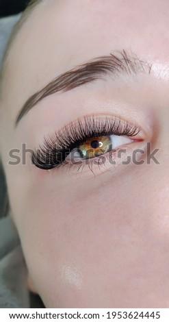 lash extensions in beauty salon macro eye  Stock fotó ©