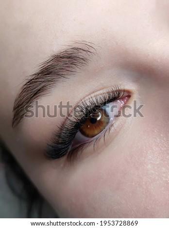 lash extensions macro eye top view  Stock fotó ©