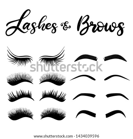 6db9991b7a3 Lashes and brows shapes icon set with lettering. Illustration for beauty  salon, fashion blog