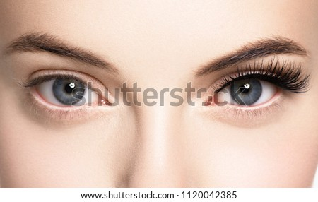 Lashes extension before after, eyelash, beautiful woman eyescloseup Stockfoto ©