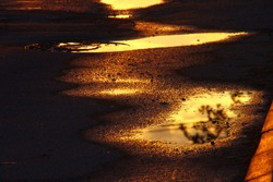 Last golden sun rays reflect in big puddle after strong evening rain. European weather in spring. Beauty of nature in city streets. Walking in town.