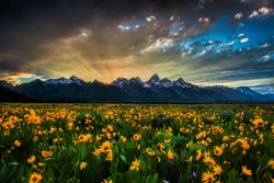 Last rays of the setting sun shoot out dramatically from behind the mountains of Wyoming's Grand Teton National Park.