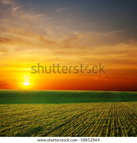 last sunrays over green field