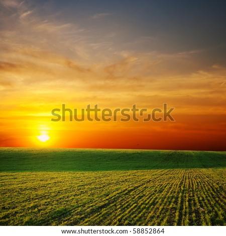 last sunrays over green field