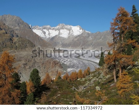 Late Autumn In The Aletsch Area