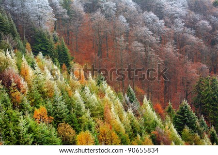 Late autumn in the mountains