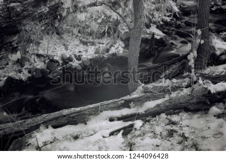 Late Autumn Woodland Stream Scene, Black And White Infrared Photography
