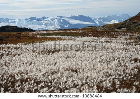 Late summer on Icefjord near Ilulissat, West Greenland