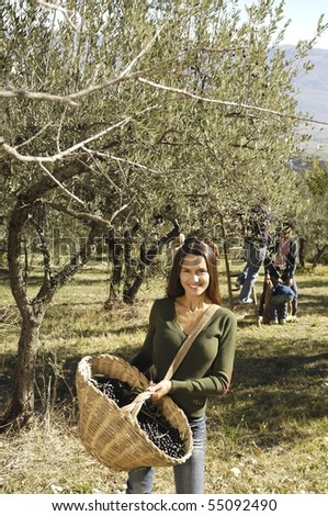 latin woman in a olive trees field