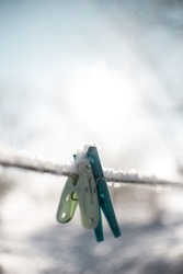Laundry clippers frozen in the snow