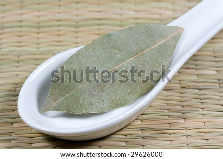 laurel leaves on a white spoon