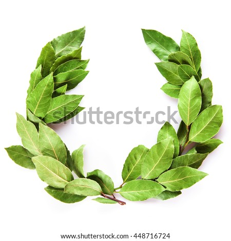 Laurel wreath made of dried branches and leaves isolated on a white background #448716724