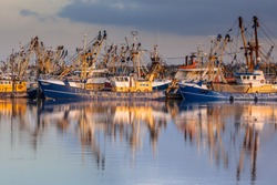 Lauwersoog hosts one of the biggest fishing fleets in the Netherlands. The fishery concentrates mainly on the catch of mussels, oysters, shrimp and flatfish in the Waddensea