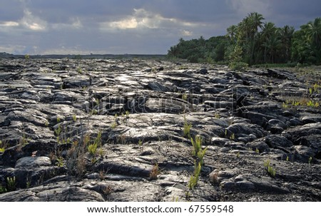Lava field near Kalapana (Big Island, Hawaii) 01