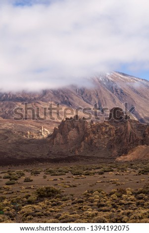 Lava stones and rocks around the volcano covered by the generic plants. Top of Pico del Teide surrounded by white clouds. Teide national park, Tenerife, Canary Islands, Spain. #1394192075