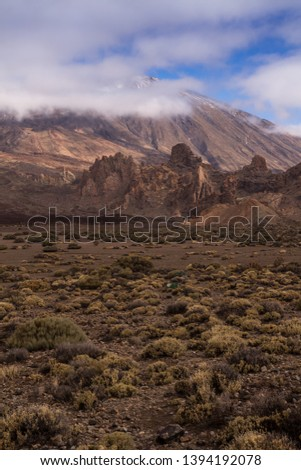 Lava stones and rocks around the volcano covered by the generic plants. Top of Pico del Teide surrounded by white clouds. Teide national park, Tenerife, Canary Islands, Spain. #1394192078