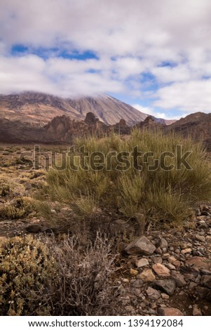 Lava stones and rocks around the volcano covered by the generic plants. Top of Pico del Teide surrounded by white clouds. Teide national park, Tenerife, Canary Islands, Spain. #1394192084
