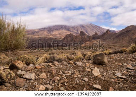Lava stones and rocks around the volcano covered by the generic plants. Top of Pico del Teide surrounded by white clouds. Teide national park, Tenerife, Canary Islands, Spain. #1394192087