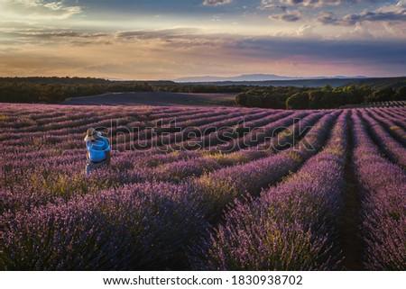 lavanda en brihuega sunset view Foto stock ©