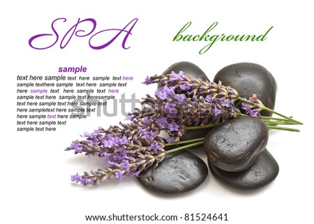 Lavender and spa stones on a white background