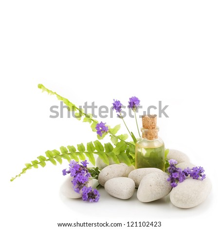 Lavender, fern, essential oil and white stones