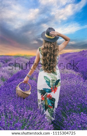 Lavender field on summer and a girls with a basket in her hand and a hat on her head and very long curly hair Stock fotó ©