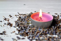 Lavender flavor. Violet candle in lavender flowers. Lavender aromatherapy.