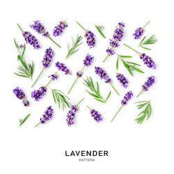 Lavender flowers and leaves creative pattern and collection isolated on white background. Top view, flat lay. Floral design elements. Healthy eating and alternative medicine concept