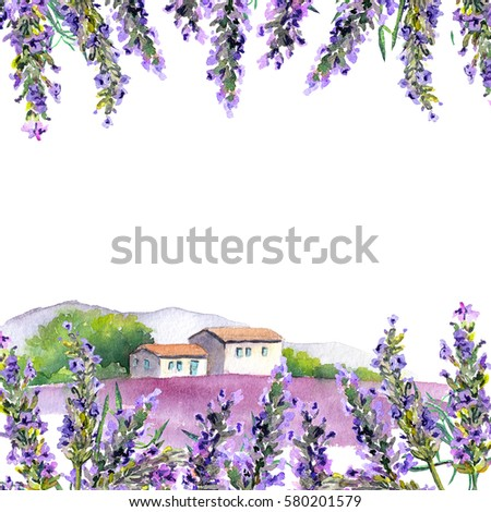 lavender flowers and rural farm ...
